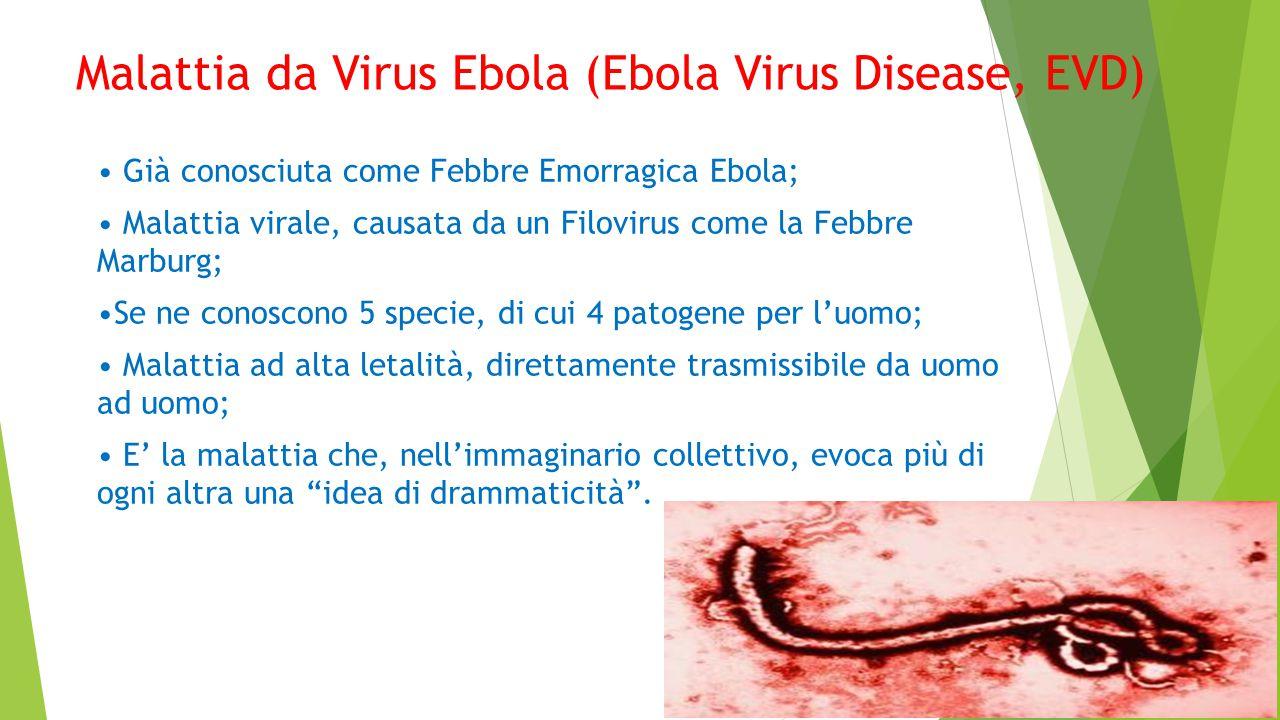 Malattia da Virus Ebola (Ebola Virus Disease, EVD)