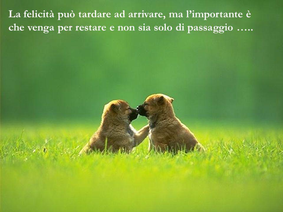 La felicità può tardare ad arrivare, ma l'importante è che venga per restare e non sia solo di passaggio …..