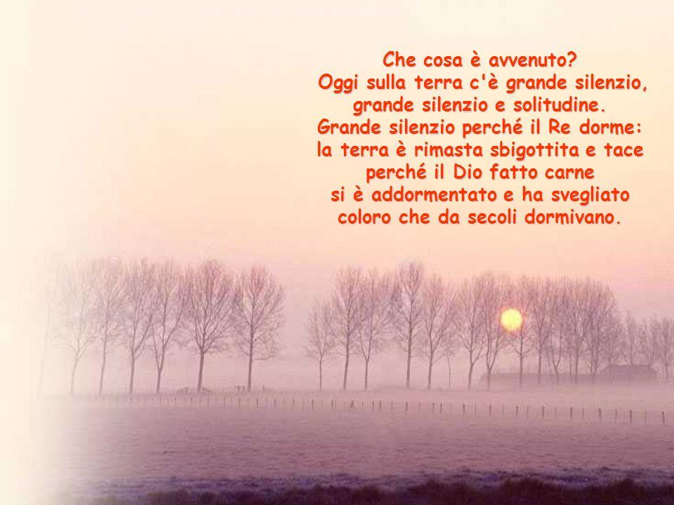 Oggi sulla terra c è grande silenzio, grande silenzio e solitudine.