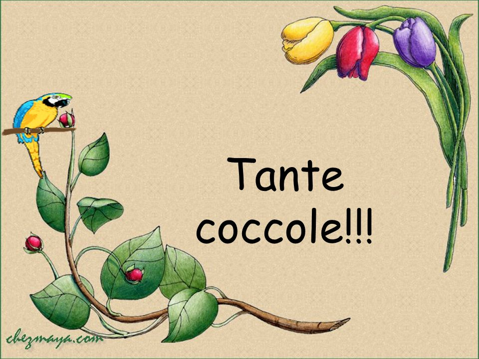 Tante coccole!!!