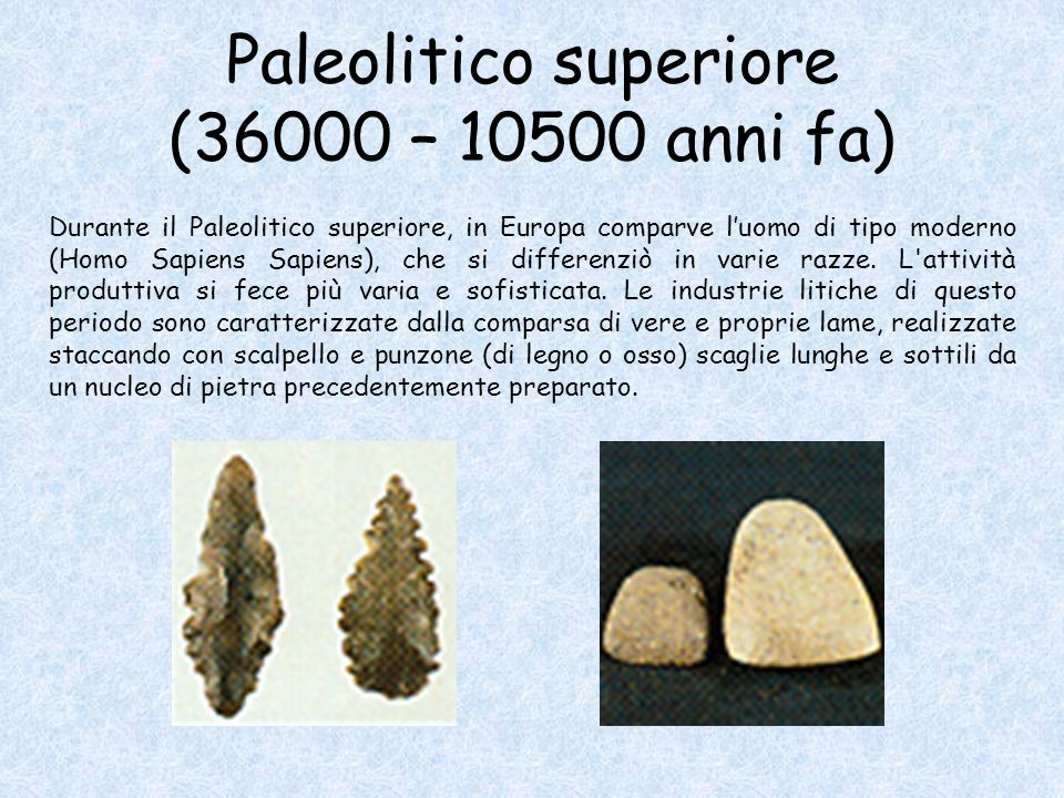 Paleolitico superiore (36000 – 10500 anni fa)