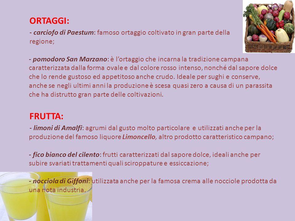 ORTAGGI: - carciofo di Paestum: famoso ortaggio coltivato in gran parte della.