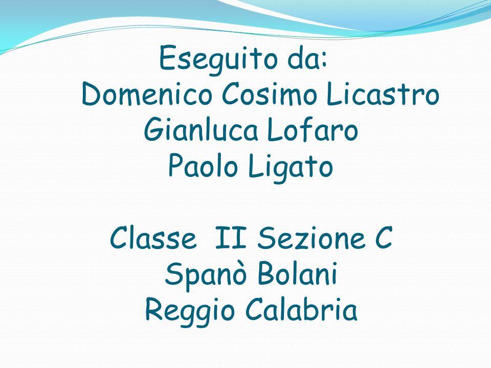 Eseguito da: Domenico Cosimo Licastro Gianluca Lofaro Paolo Ligato Classe II Sezione C Spanò Bolani Reggio Calabria