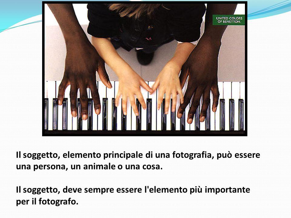 Il soggetto, elemento principale di una fotografia, può essere una persona, un animale o una cosa.