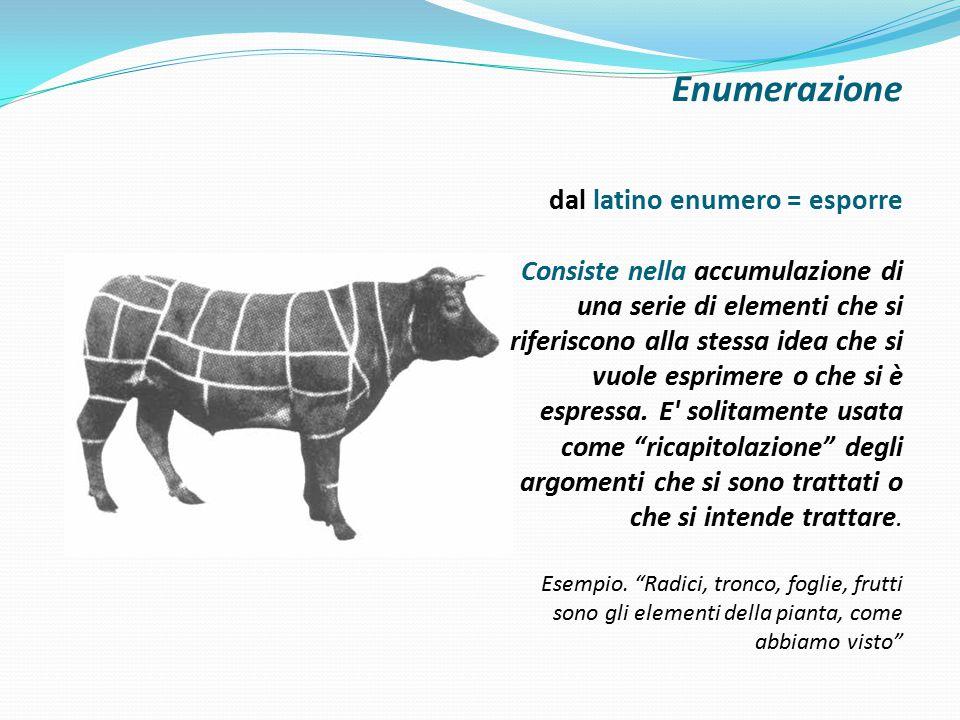 Enumerazione dal latino enumero = esporre Consiste nella accumulazione di una serie di elementi che si riferiscono alla stessa idea che si vuole esprimere o che si è espressa.