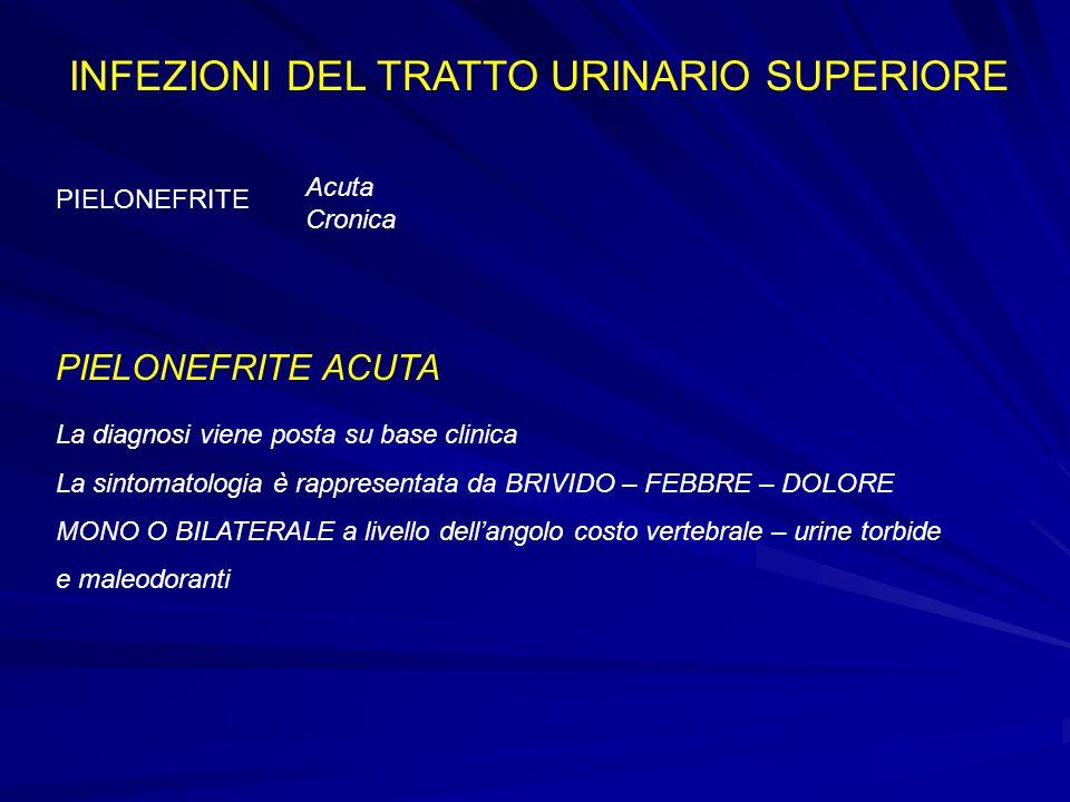 INFEZIONI DEL TRATTO URINARIO SUPERIORE