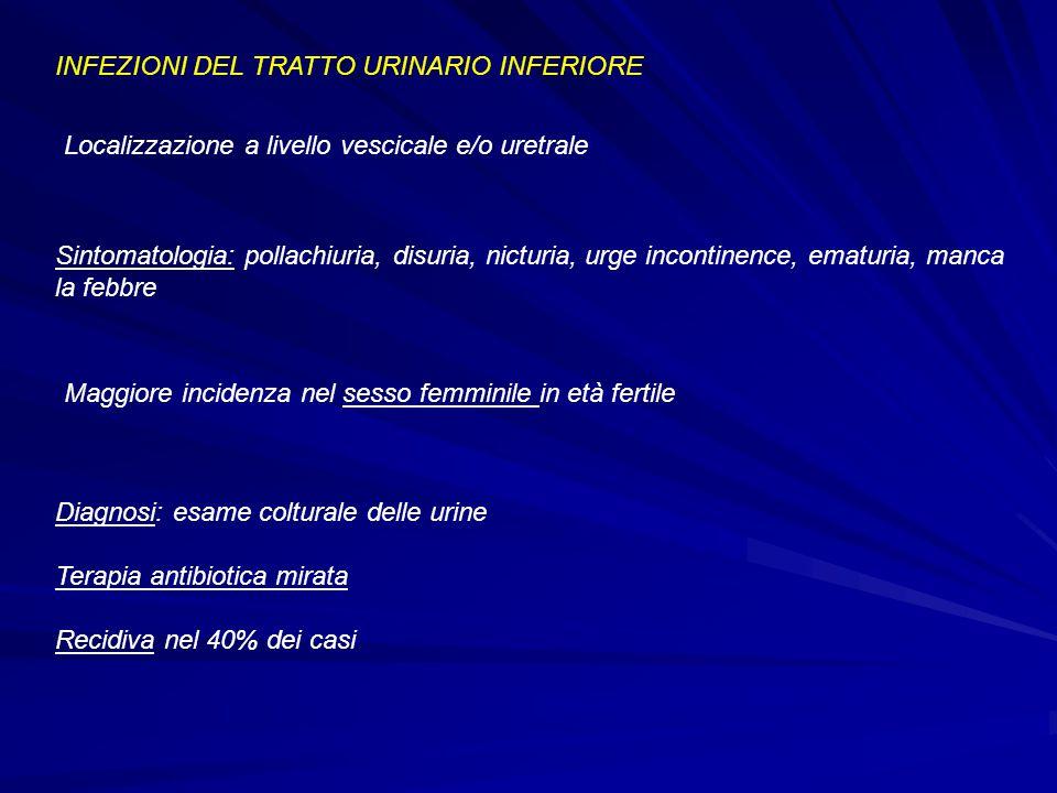 INFEZIONI DEL TRATTO URINARIO INFERIORE