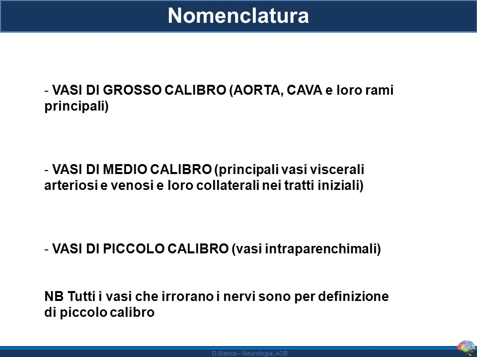 Nomenclatura VASI DI GROSSO CALIBRO (AORTA, CAVA e loro rami principali)