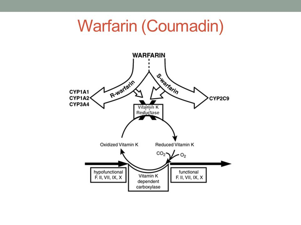 Warfarin (Coumadin)