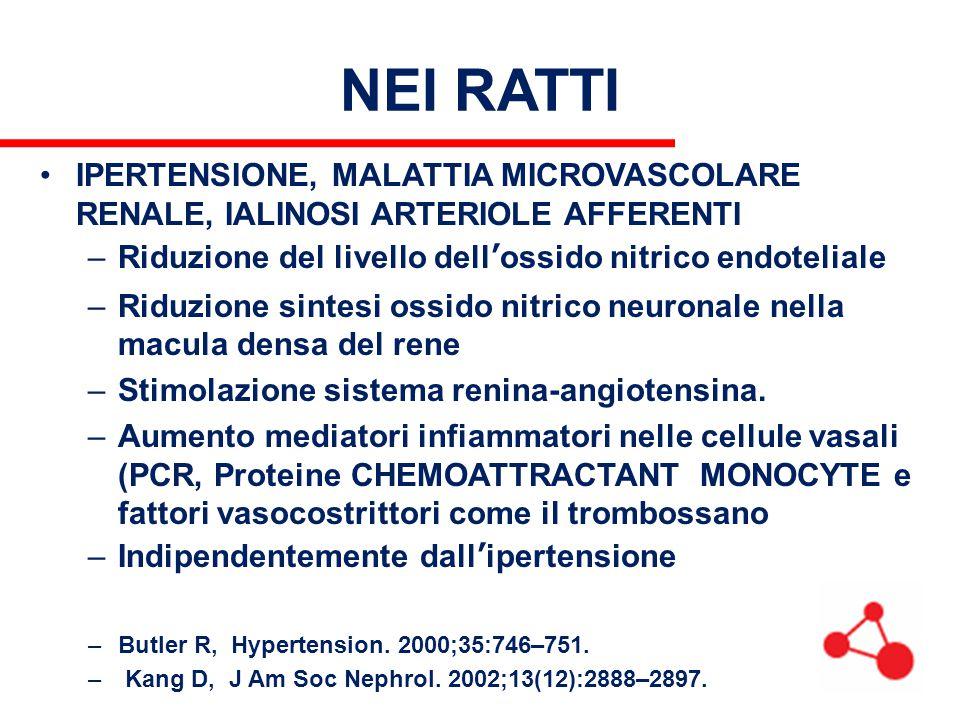 NEI RATTI IPERTENSIONE, MALATTIA MICROVASCOLARE RENALE, IALINOSI ARTERIOLE AFFERENTI. Riduzione del livello dell'ossido nitrico endoteliale.