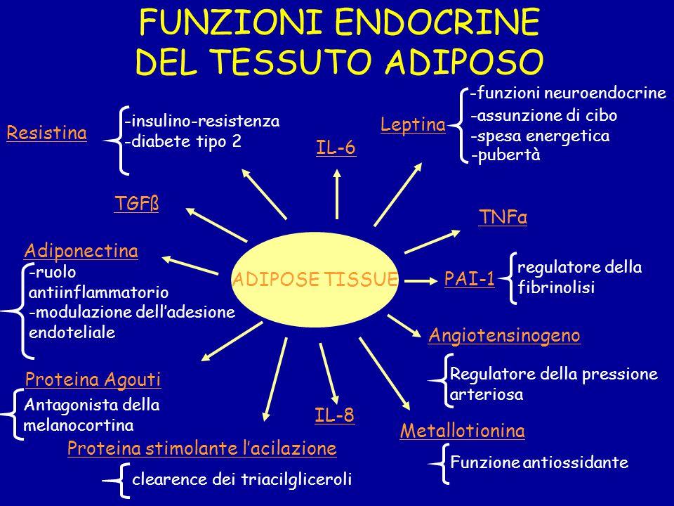 FUNZIONI ENDOCRINE DEL TESSUTO ADIPOSO Leptina Resistina IL-6 TGFß