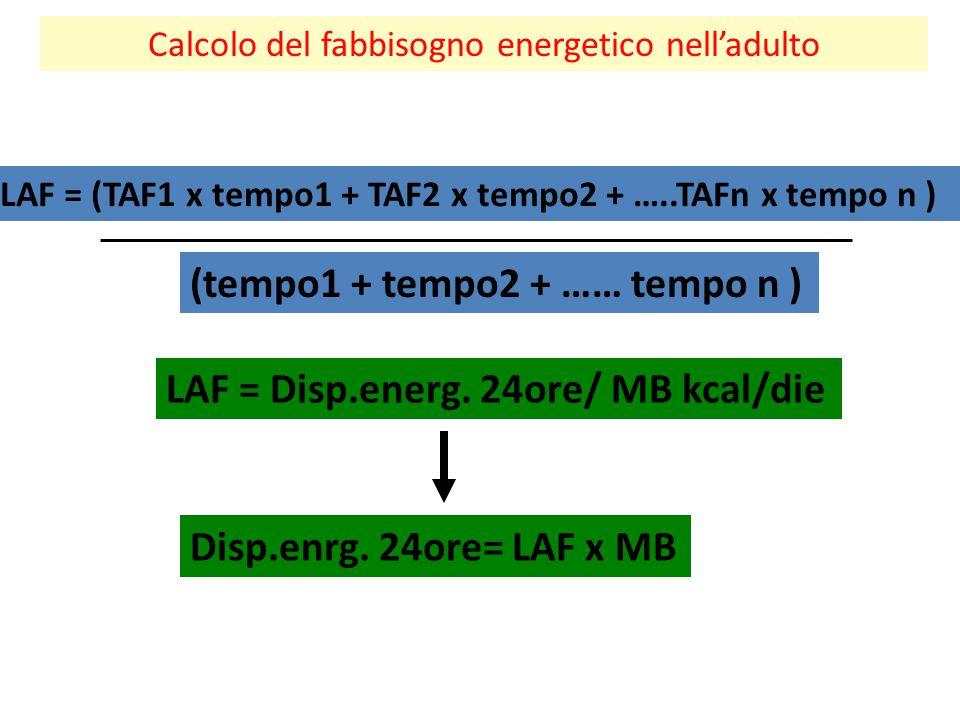 Calcolo del fabbisogno energetico nell'adulto