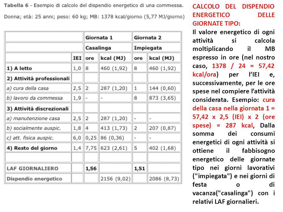 CALCOLO DEL DISPENDIO ENERGETICO DELLE GIORNATE TIPO: