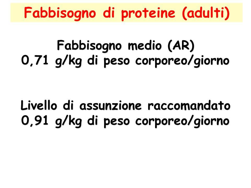 Fabbisogno di proteine (adulti)