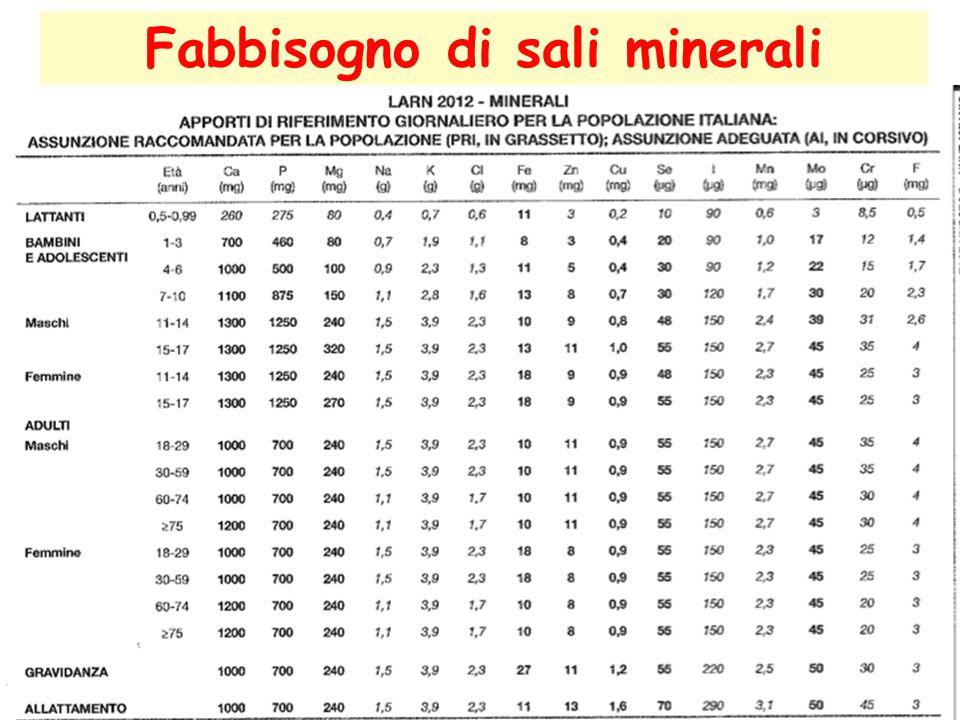 Fabbisogno di sali minerali