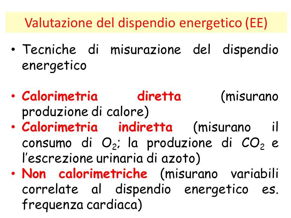 Valutazione del dispendio energetico (EE)