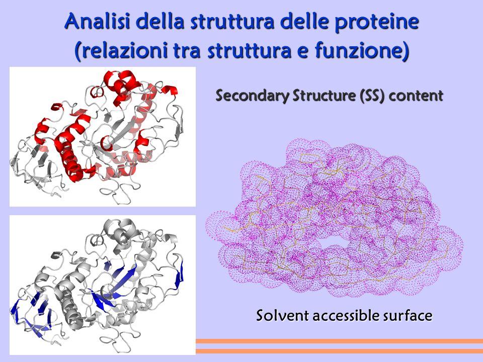Analisi della struttura delle proteine
