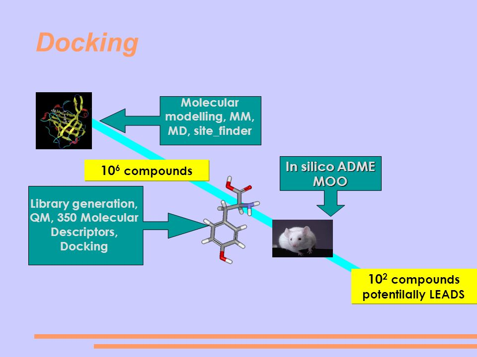 Docking In silico ADME 106 compounds MOO