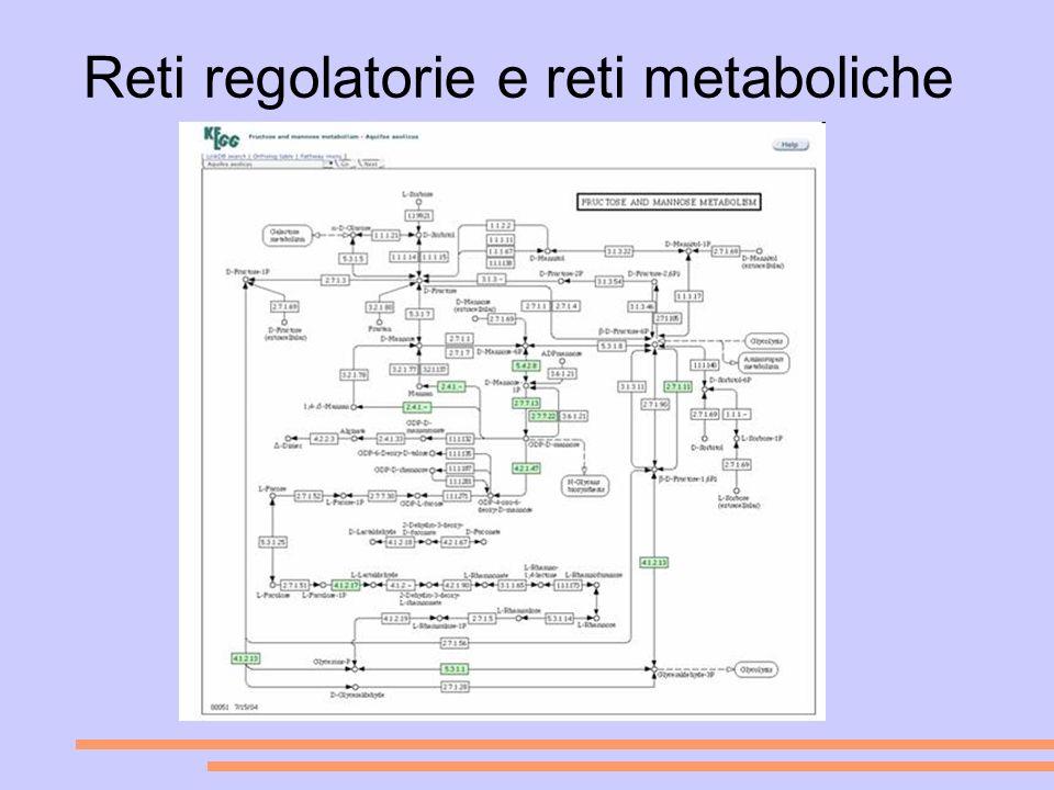 Reti regolatorie e reti metaboliche