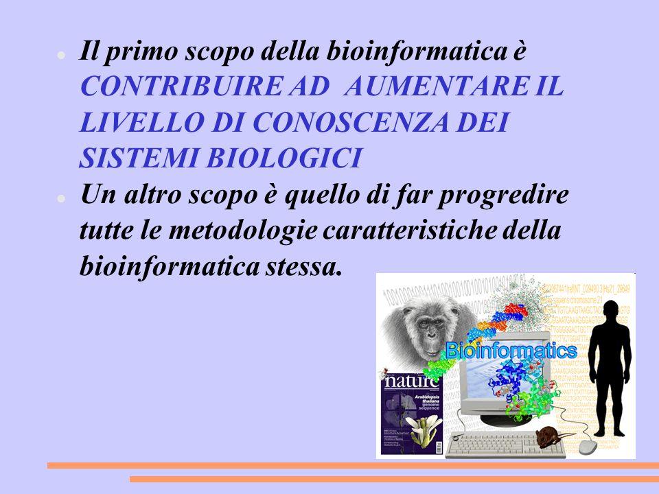 Il primo scopo della bioinformatica è CONTRIBUIRE AD AUMENTARE IL LIVELLO DI CONOSCENZA DEI SISTEMI BIOLOGICI