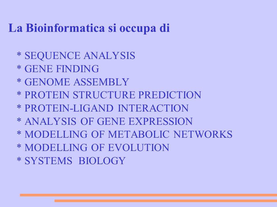 La Bioinformatica si occupa di