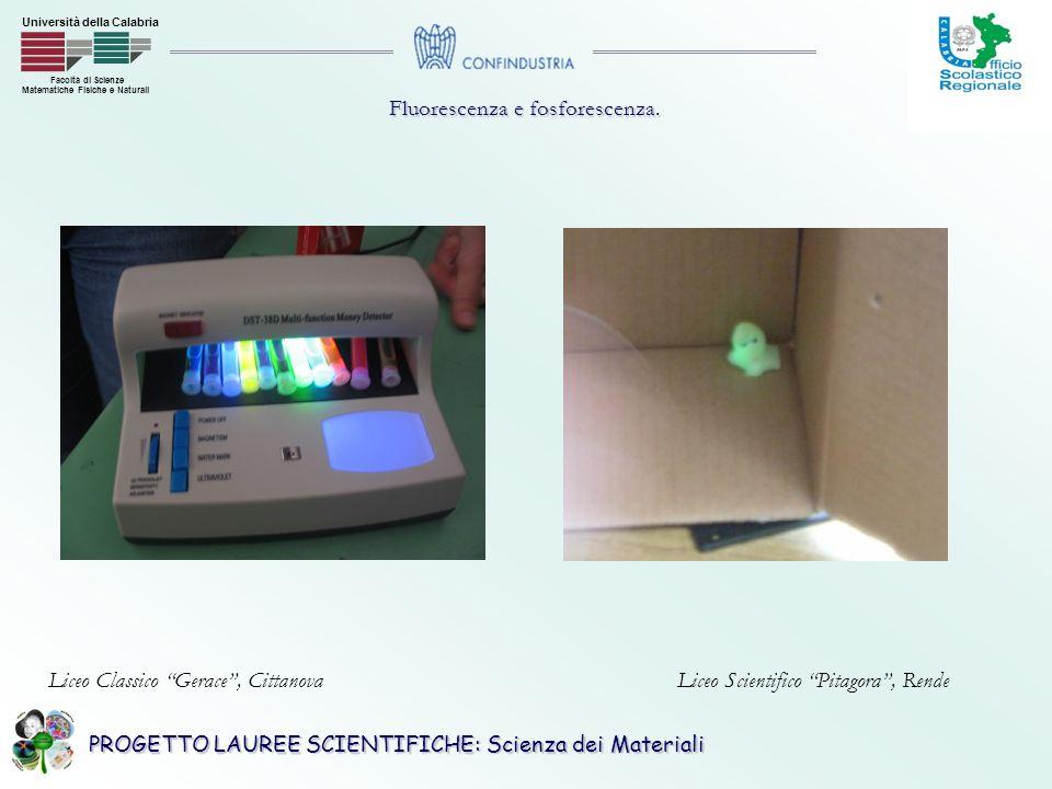 Fluorescenza e fosforescenza.