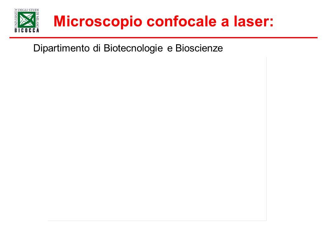 Microscopio confocale a laser: