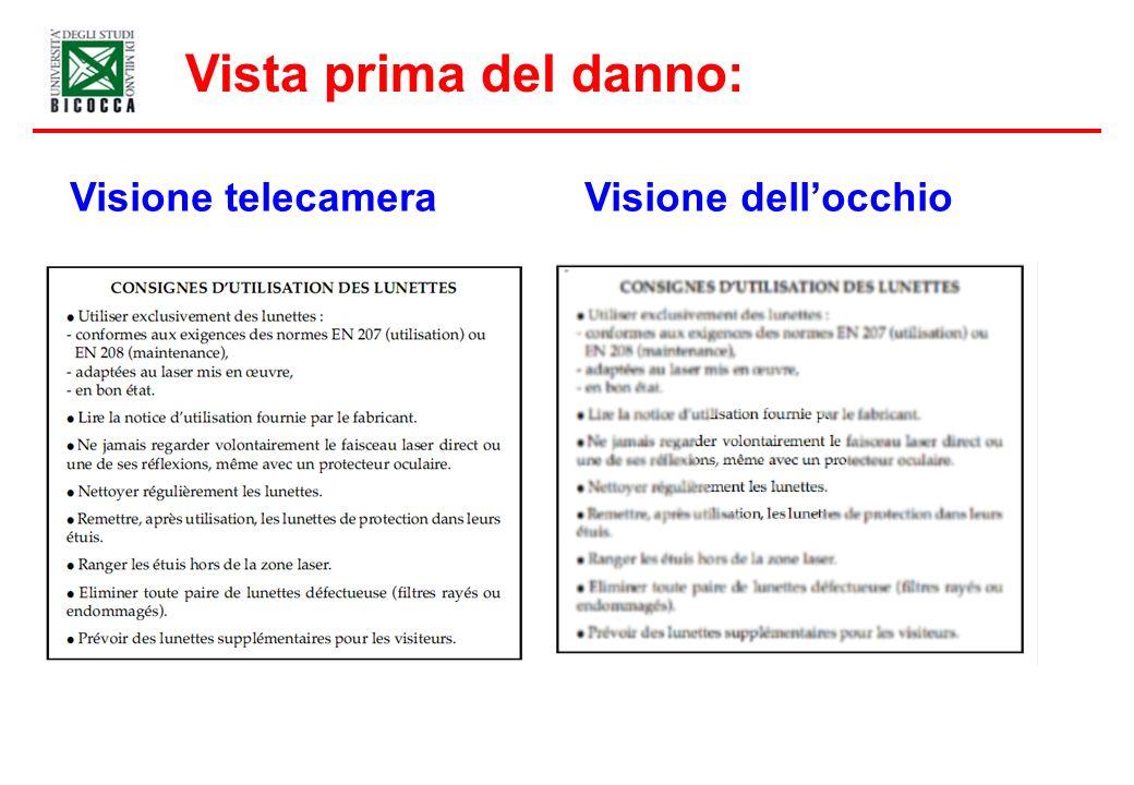 Vista prima del danno: Visione telecamera Visione dell'occhio