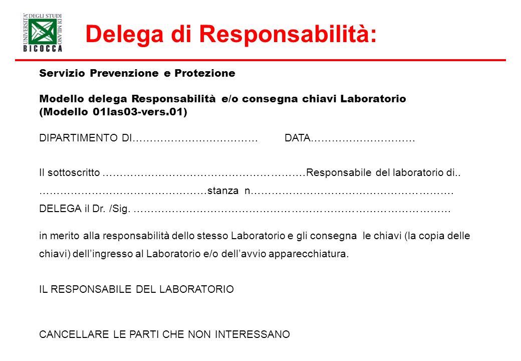 Delega di Responsabilità: