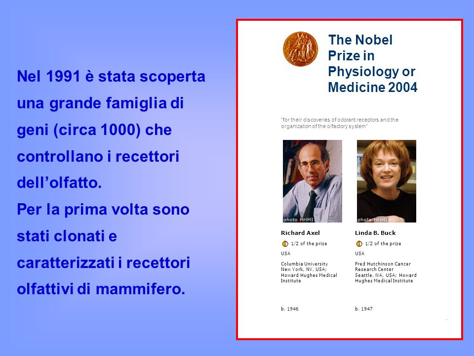 The Nobel Prize in Physiology or Medicine 2004.
