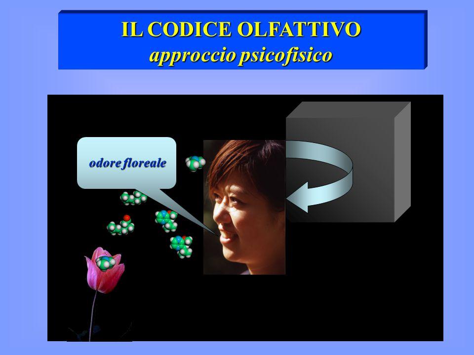 approccio psicofisico