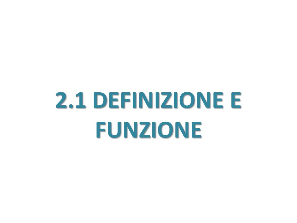 2.1 DEFINIZIONE E FUNZIONE