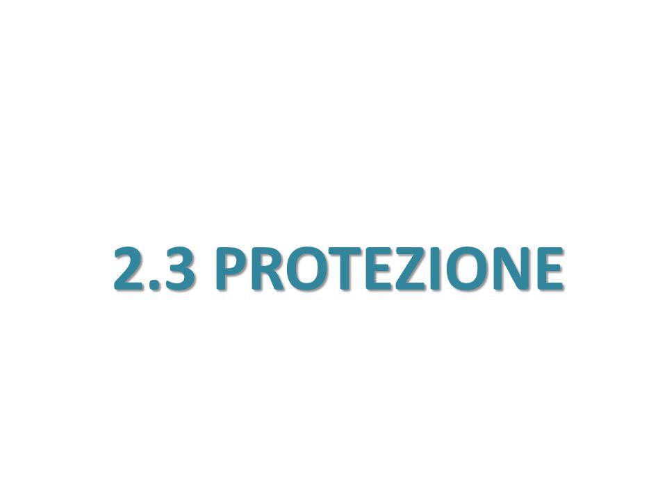 2.3 PROTEZIONE