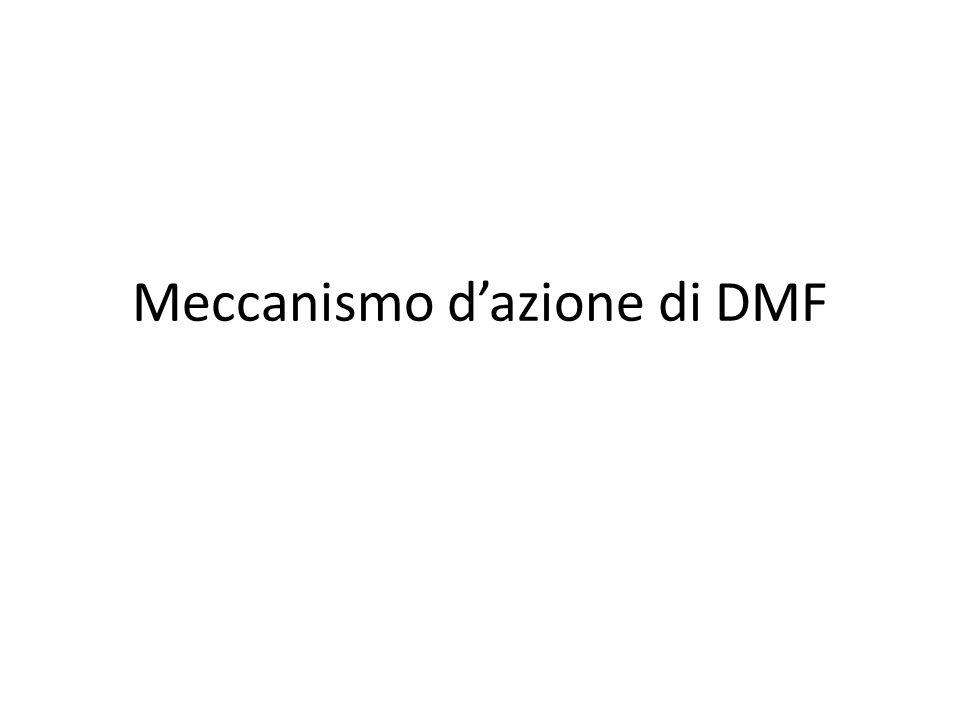 Meccanismo d'azione di DMF