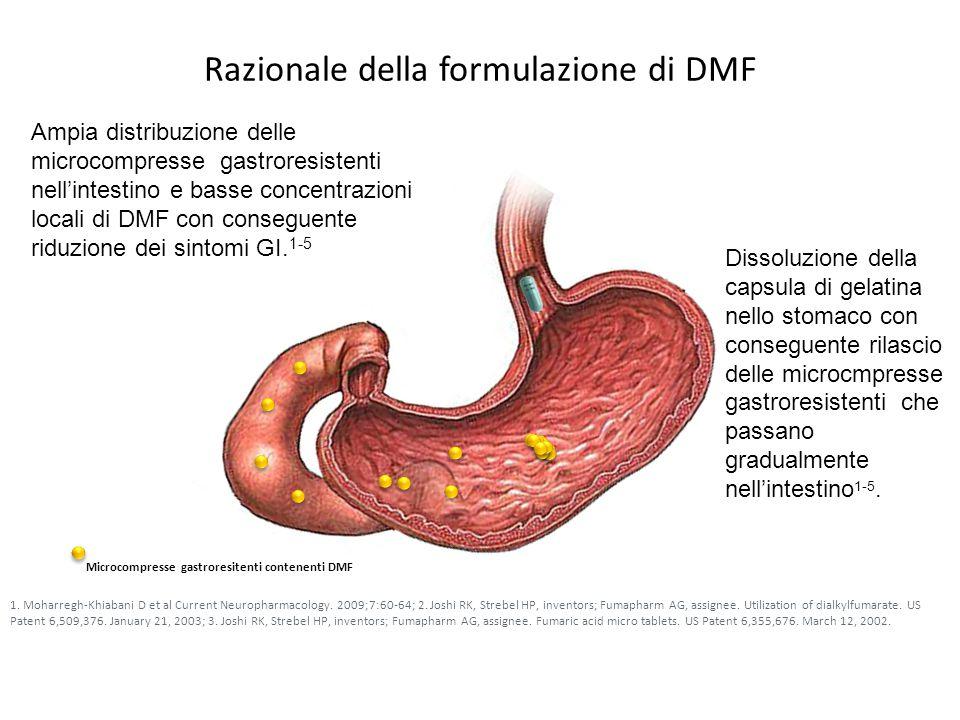 Razionale della formulazione di DMF