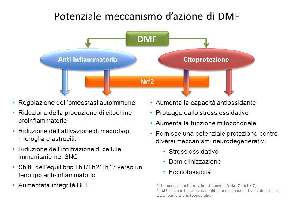 Potenziale meccanismo d'azione di DMF