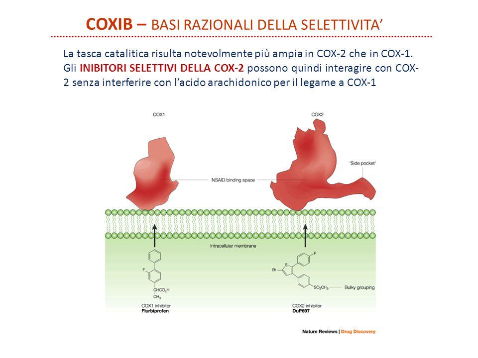 COXIB – Basi razionali della selettivita'