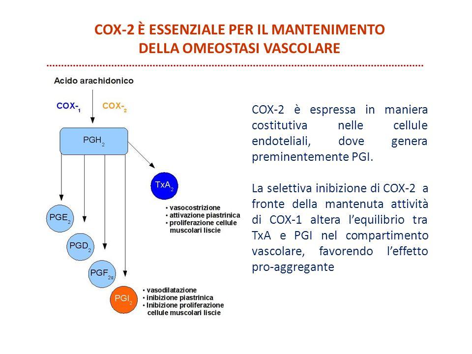 COX-2 è essenziale per il mantenimento della omeostasi vascolare