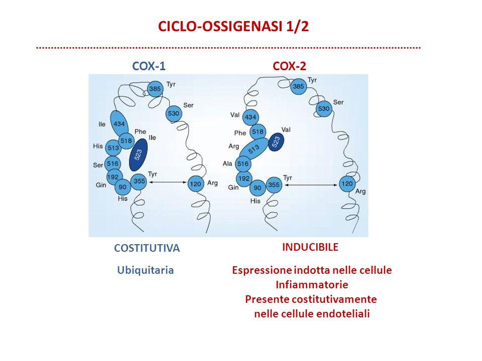 CICLO-OSSIGENASI 1/2 COX-1 COX-2 costitutiva inducibile Ubiquitaria