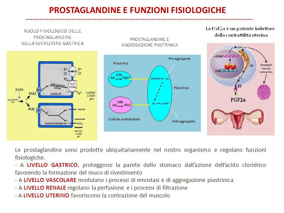 Prostaglandine e funzioni fisiologiche