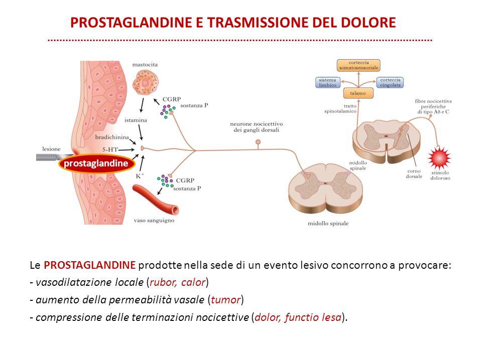 Prostaglandine e trasmissione del dolore