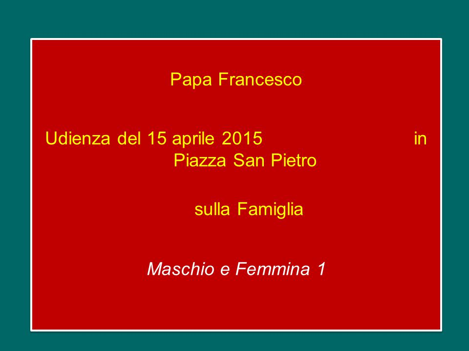 Papa Francesco Udienza del 15 aprile 2015 in Piazza San Pietro sulla Famiglia Maschio e Femmina 1