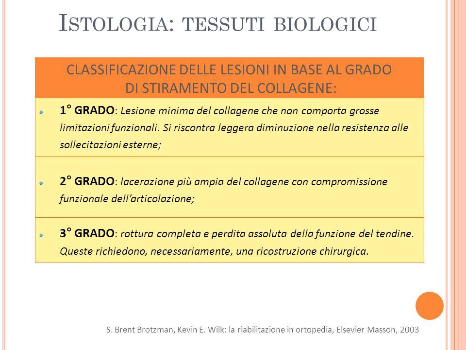 Istologia: tessuti biologici