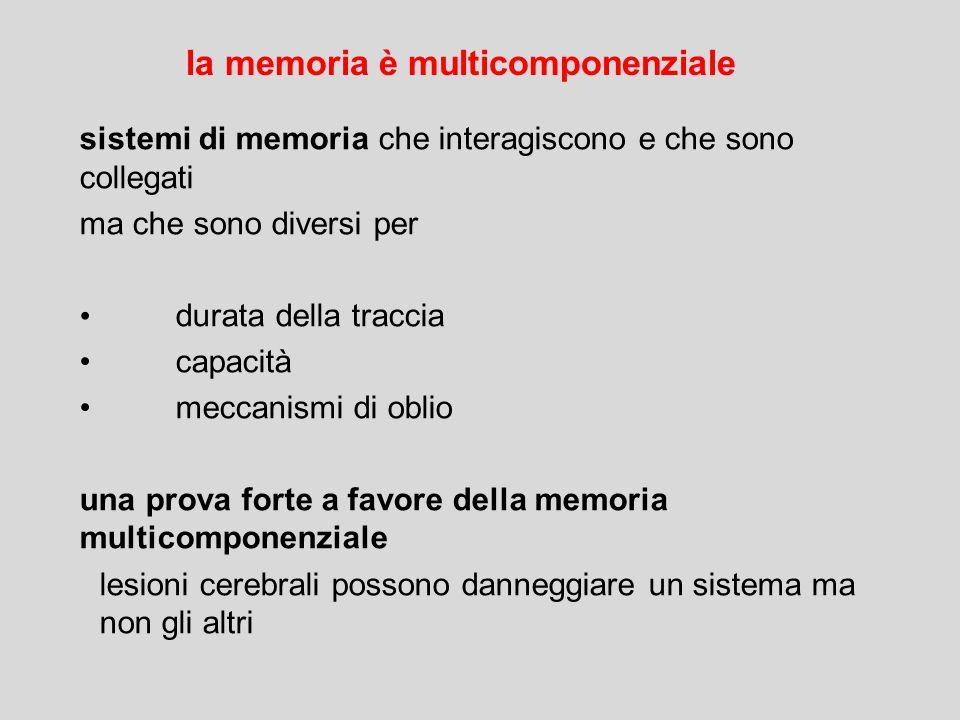 la memoria è multicomponenziale