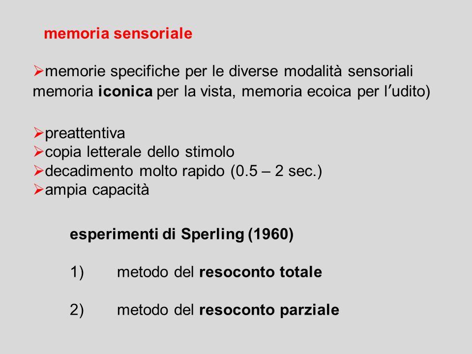 memoria sensoriale memorie specifiche per le diverse modalità sensoriali. memoria iconica per la vista, memoria ecoica per l'udito)