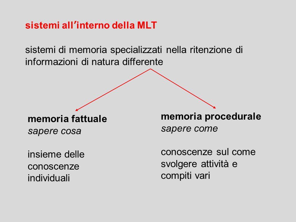 sistemi all'interno della MLT