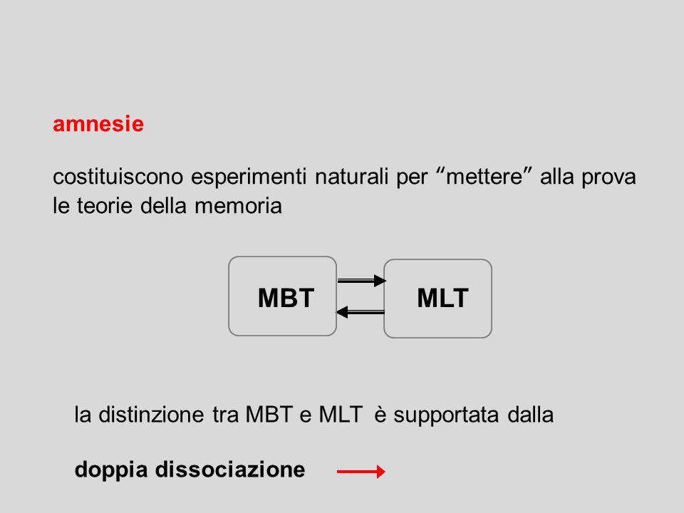amnesie costituiscono esperimenti naturali per mettere alla prova le teorie della memoria. MBT. MLT.
