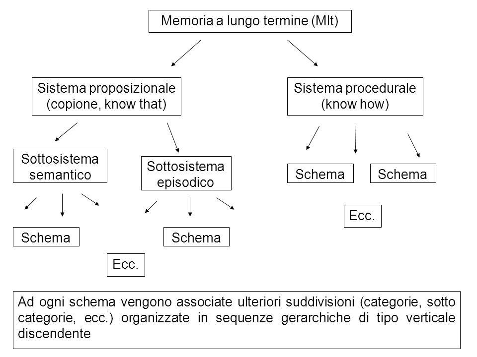 Memoria a lungo termine (Mlt)