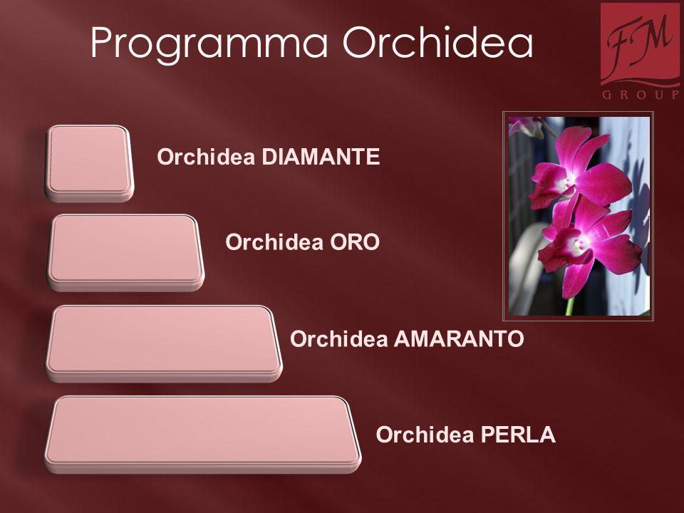 Programma Orchidea Orchidea DIAMANTE Orchidea ORO Orchidea AMARANTO