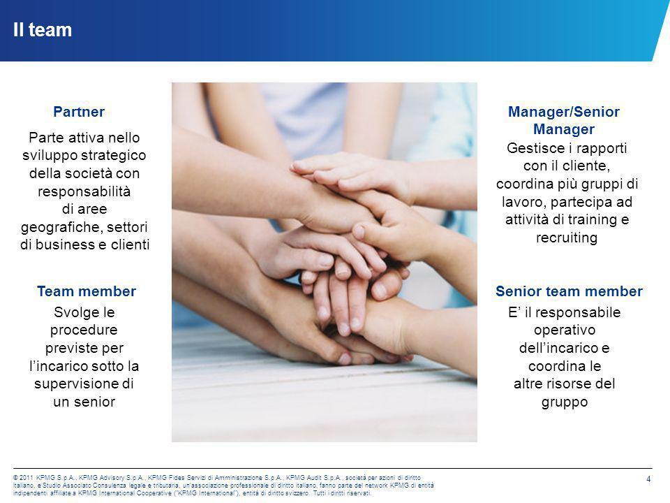 Manager/Senior Manager